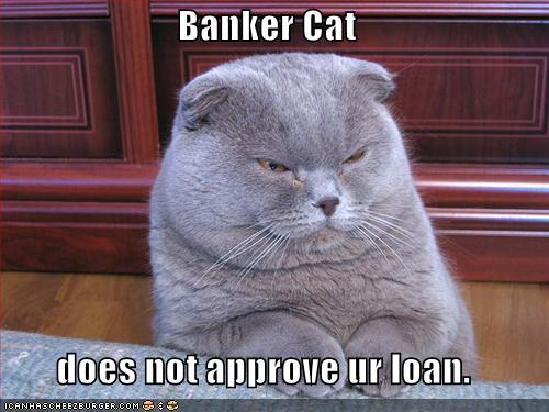 bankerlolcatfunny-pictures-banker-cat.jpg